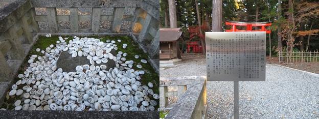 多賀大社(犬上郡多賀町)寿命石