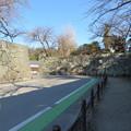 写真: 彦根城(彦根市)京橋御門跡