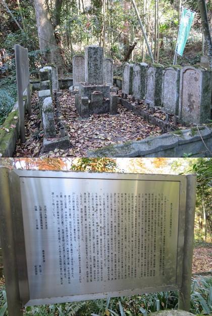 龍潭寺(彦根市)奥平家墓地