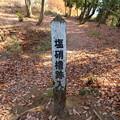 Photos: 佐和山城(彦根市)西の丸塩硝櫓