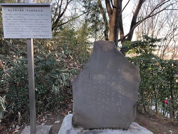 宗印寺(日野市)平山陸稲発見者 林丈太郎記念碑