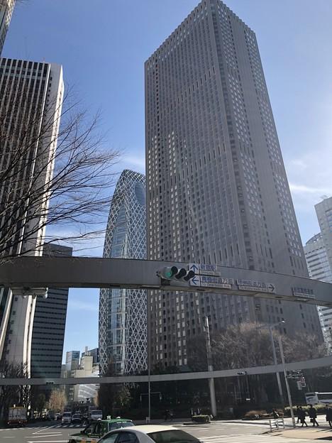 Photos: 新宿警察署裏交差点(新宿区西新宿)