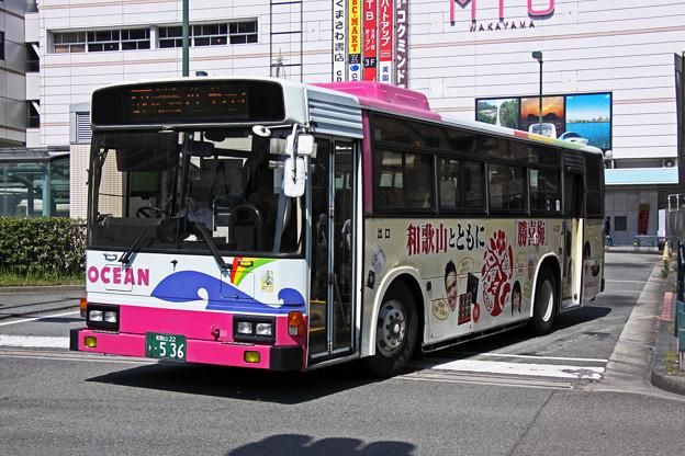 IMG_4478-e01