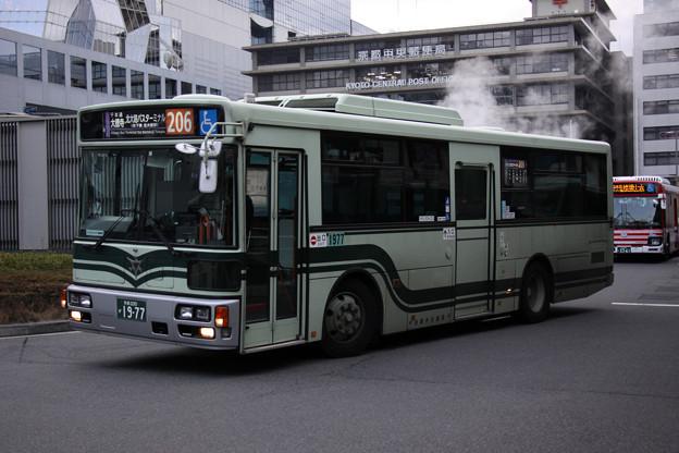 IMG_5556-e01
