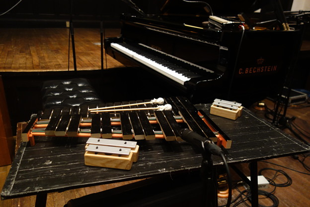 コトリンゴさんライブ 楽器