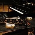Photos: コトリンゴさんライブ 楽器
