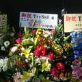 TrySail 横アリライブ アニメ プリプリちいちゃん!! より花輪