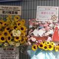 Photos: TrySail 横アリライブ 花輪
