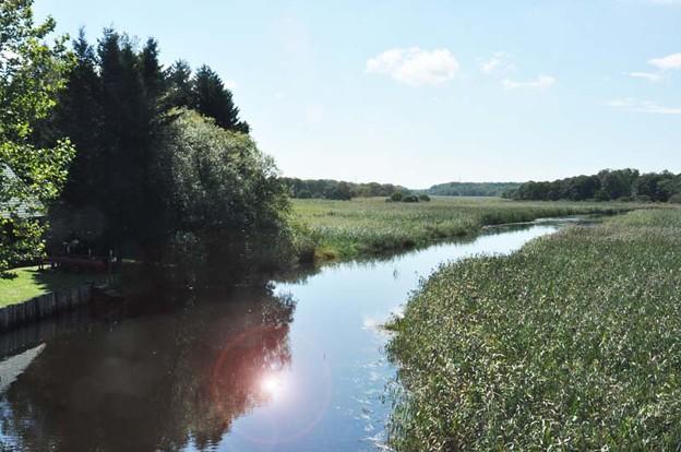 草原を流れる美々川の風景