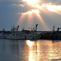 写真: 朝の漁港
