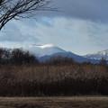 写真: 樽前山の冠雪