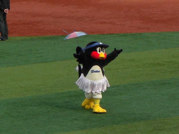 傘振りつばみ姫