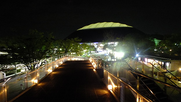 西武ドーム夜景2