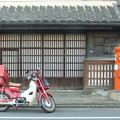 Photos: 川越 旧田口家前丸ポスト 2014年正月 2