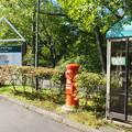Photos: 軽井沢 塩沢湖前丸ポスト