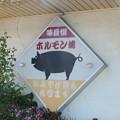 Photos: 双葉食堂看板
