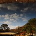 Photos: ~池のキャンバス~