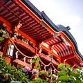 写真: 淡嶋神社の拝殿
