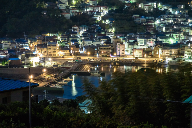 稲取港の夜
