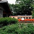 写真: いすみ鉄道 木造無人駅舎とキハ20