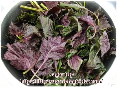 赤紫蘇ジュース2-1