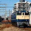 Photos: JR東日本EF65 1105+チキ 2003-1-25