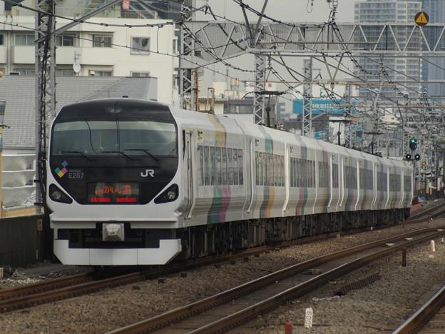 E257系 長モトM116F 2017-12-15