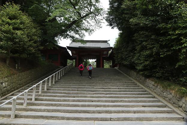 ぐったり階段