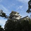 裏手から岡山城
