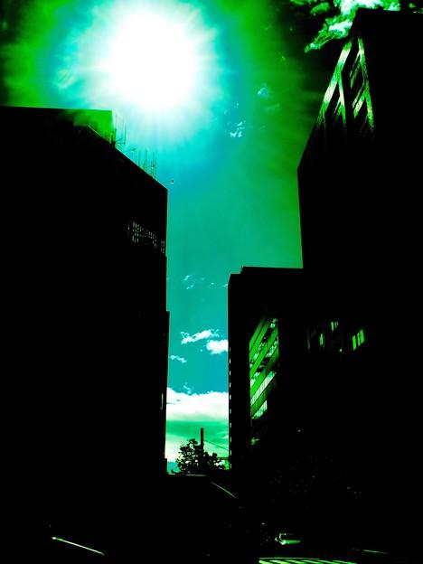 台風一過 緑天