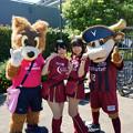 Photos: ロビーくん