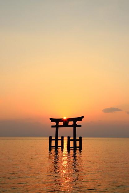 写真: 朝陽の湖中鳥居
