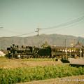 写真: SLはひた走る。