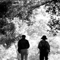 写真: ふたりで歩く道