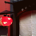 Photos: 路地灯り