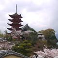 宮島・光明院前から五重塔へ向かう(2)