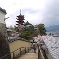 宮島・光明院前から五重塔へ向かう(1)