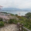 平松茶屋からの眺め(2)