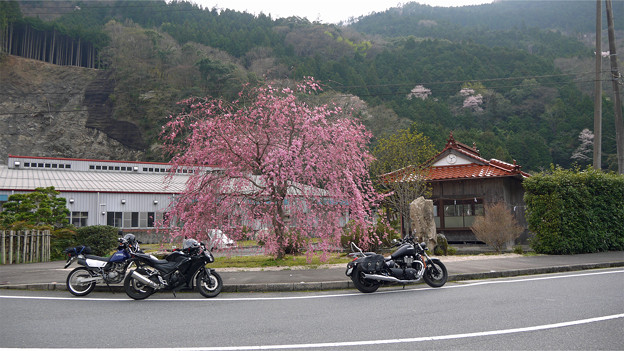 Photos: 道の駅ピュラアインにしき(2)