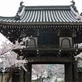 Photos: 龍頭山照蓮寺(5)
