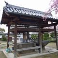 Photos: 龍頭山照蓮寺(4)