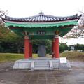 道の駅ポート赤崎(6)
