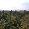 砂丘センター見晴らしの丘(3)