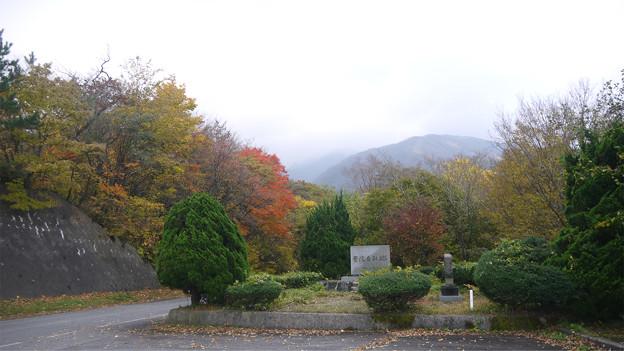 大山の紅葉(2)