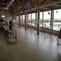 米子水鳥公園(5)