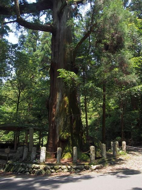 yatounooosugi02