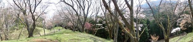 maruyamakouen_otue_p06