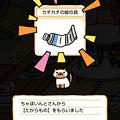 Photos: ちゃぽいんと2