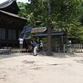 写真: 武田神社06