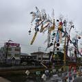 写真: 杉戸宮代七夕祭り01